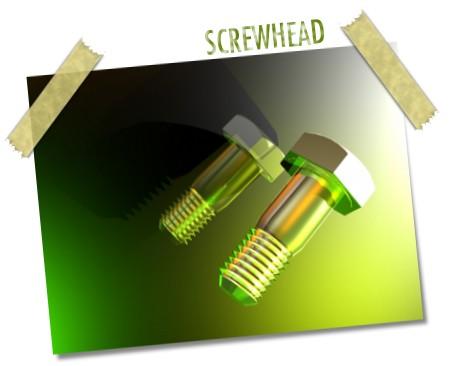 ScrewHead